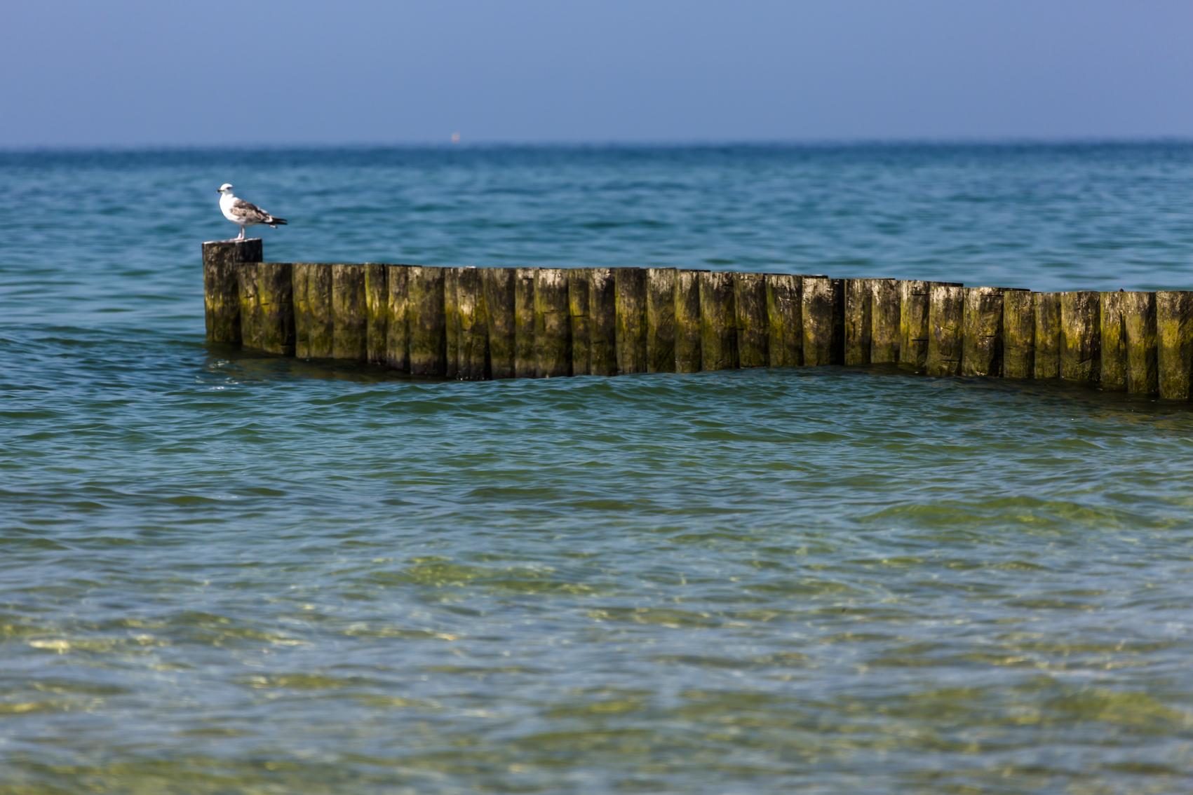 Buhnen FeWos Del Mar Zingst