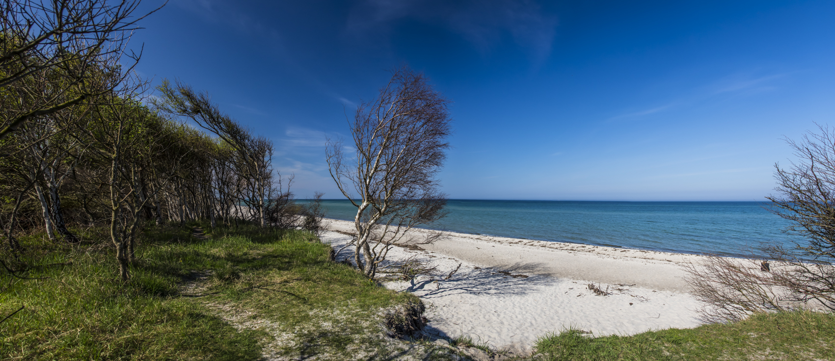 Dünen mit Strand FeWos Del Mar Zingst